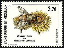 SAINT PIERRE ET MIQUELON NEUF N°594** INSECTE CRISTALIS TENAX TB, 1994 SPM MNH