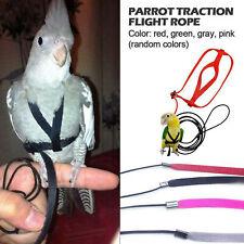 Guinzaglio per pappagallo per guinzaglio per Training Rope Cockatiel Outdoor