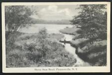 Horse Shoe Bend Pleasantville NY Artvue Post Card Co