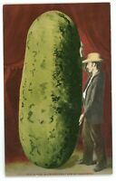 Large Watermelon Exaggeration California CA Farming Postcard