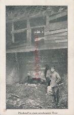 AK, Foto, WK1, Rethel (Fr.) - Pferdestall i. zersch. haus, 1914-15; 5026-34
