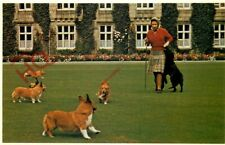 Picture Postcard::QUEEN ELIZABETH II, WITH ROYAL CORGIS [QUEEN AND PEOPLE]