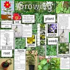 GROWING PLANTS teaching resource pack on CD- science, Spring, EYFS, KS1, KS2