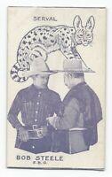Rare 1920's Film Star & Animals Strip Card Bob Steele / Serval