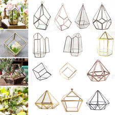 Tabletop Geometric Terrarium Glass Box Pot Plant Planter Succulent Moss Holder