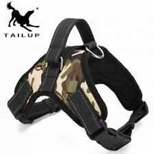 Dog Harness Glowing Led Collar Leashes Puppy Lead Pet Vest Accessories