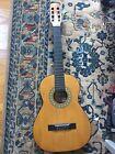 Acoustic Guitar Gremlin Six String wGuitar Case for sale