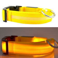 LED Pet Collar Pets Dog Walk Safety Flashing Light Leash Glow in The Dark Party0 Yellow M