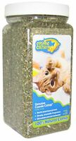 OurPet's  Catnip Jar 3oz(Free Shipping in USA)