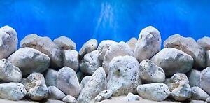 "12"" Tall Height New Aquarium / Vivarium Background Poster Dappled Boulders"