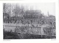 "*Postcard-""The Fowler Barns"" -1907- (Vineyards Sprouting)   *Lodi, CA. (#187)"