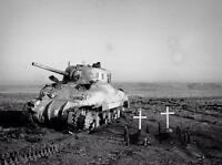 WWII Photo Canadian M4 Sherman Crew Graves Italy  World War Two WW2 B&W / 3088
