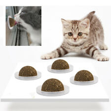 Cat Catnip Ball Licking Snacks Pet Wall Mount Teething Toy Chasing Ball Toys 02