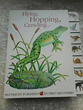 Mes premières découvertes Fly Hop ramper Childrens premier dictionnaire d'apprentissage livre Grenouille