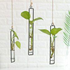 Clear Glass Test Tube Hanging Planter Bud Flower Vase for Home Decor Green Plant