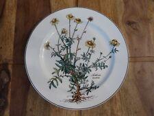 Villeroy & Boch * Botanica * Speiseteller / Essteller Ø 24,5 cm