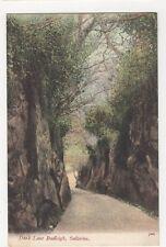 Dark Lane Budleigh Salteron, JWS Postcard #2, M029