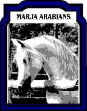 CARROT GRANULES 1KG HUMAN GRADE HERBS FOR HORSES + PEOPLE