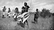 African Warriors Tribesmen Spears & Shields Africa 1921 7x4 Inch Reprint Photo
