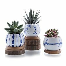 New listing Ceramic succulent Plant Pot Flower Container Planter Bamboo Tray Set of 3