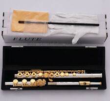 Silver Gold Plating 17 Open Hole Flute C Tone B Foot italian pads Leather Case