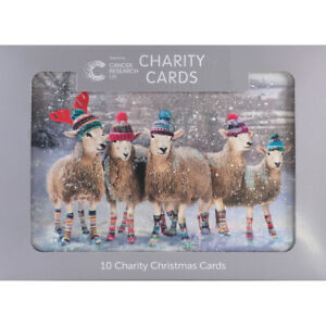 Cancer Research UK Charity Sheep Christmas Cards: Pack of 10, Stationery, New