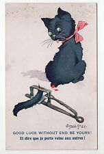 Animal CHAT cat cats carte N° 10 Donald MC GILL Chat queue coupée porte veine