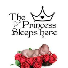 The Princess Sleeps Here Quote Wall StiNNker Bedroom Decals Girl Room SJ