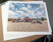 Massey Ferguson 590 & 65 Tractors - NEW Fine Art Print by Steven Binks