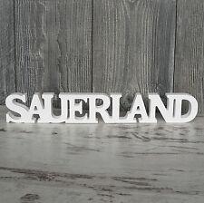 Sauerland Schriftzug aus Holz 40cm weiß Buchstaben Wanddeko Holzschild NEU