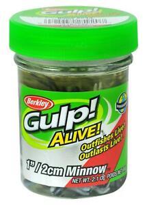 Berkley Gulp Alive Minnow 1 Inch, 2.1 Oz Scented Bait for Trout Fishing