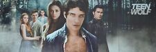 TEEN WOLF - Poster (ca. 80 x 28 cm) - Clippings Fan Sammlung NEU
