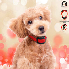 Red No Shock Dog Anti Bark Collar Automatic Vibration Safe Small Dog Training