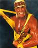 Hollywood Hulk Hogan Autograph Pre Print Wrestling Photo 8x6 Inch