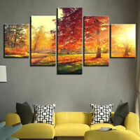 Romantic Sunrise In The Fall Park Poster Wall Art Tree Home Decor 5pCanvas Print