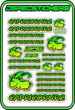 CAPRICORN RC STICKER A5 LAB 1/8 F1 1/10 TESLA ELECTRIC NITRO CAR HARD YEL GRN B
