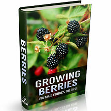 Berry Cultivation Books on DVD Culture Berries Strawberries Raspberries Growing