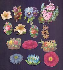 A Nice lot of 14 Vintage Scraps,Floral all scanned   (SB32)