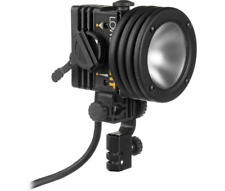 Lowel id tungsten video light with barn doors and spate bulbs 55w 100watt