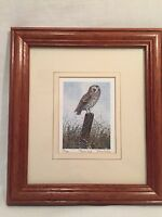 Limited Edition Framed Print Of A Tawny Owl By D Hinchliffe
