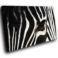 A058 Black White Zebra Stripes Funky Animal Canvas Wall Art Large Picture Prints