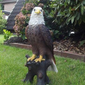 Gartenfigur Adler Greifvogel 3429 Weißkopfseeadler 40cm Garten lebensecht