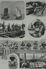 Herring Fishing Landing Cleaning Salting Barrel Yarmouth 1903 Photo Article 7817