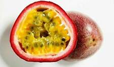 Purple Passion Fruit 50 Seeds, Passiflora Edulis, Fruits Seeds From Thailand