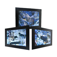 3 Dimension 3D Lenticular Picture Snow Wild Wolf Pack Fierce Forest Dangerous