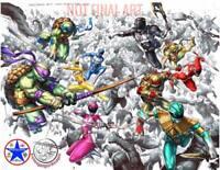 POWER RANGERS TMNT #1 ALAN QUAH & KAEL NGU EXCLUSIVE VIRGIN VARIANT NM 12/04/19