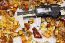 Lot of 10 Genuine  BALTIC AMBER Pieces w FOSSIL INSECTS