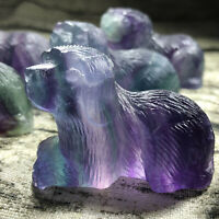 "2"" Carved Rainbow fluorite Dog Natural stone Quartz Crystal dog skull healing"
