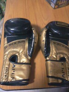RingSide Apex FTG1 L XL Boxing Gloves