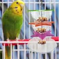 Parrot Hanging Treat Foraging Toy Feeder Acrylic Hexagonal Star Bird Feeder